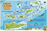 Virgin Islands Map & Coral Reef Creatures Guide Franko Maps Laminated Fish Card