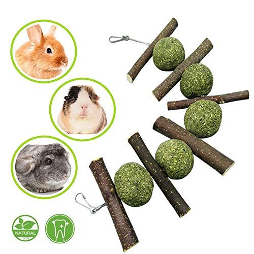 Maibtkey Hamster Chew Toys, Guinea Pig Toys Chinchilla Roller Rat Chews Toys, Teeth Care for Small Animals Bunny Rabbits Toys Accessories, Dumbbells Exercise Bell Unicycle, Pack of 10