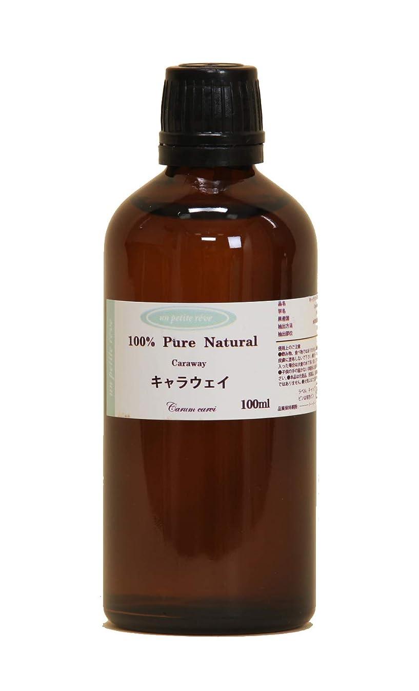 キャラウェイ  100ml 100%天然アロマエッセンシャルオイル(精油)