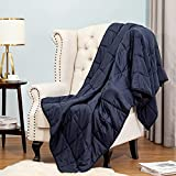 King Size Weighted Blanket 25lbs 88X104 Soft Comfortable Breathable Cotton Heavy Blanket Washable with Glass Beads for Adult Man Woman Couples and King Queen Size Beds