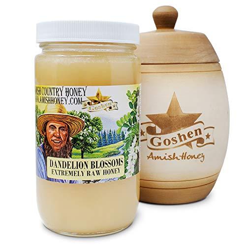Goshen Honey Amish DANDELION Extremely Raw Honey 100% Natural Honey Health Benefits Unfiltered Unpasteurized OU Kosher Certified | 1 Lb Glass Jar