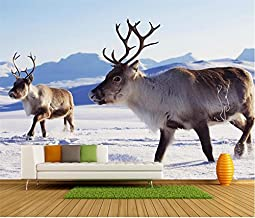 XIAOQIAO 3D Room Wallpaper Custom Mural Photo Norway Snow Elk Plain Beauty Painting Picture Wall Murals Wallpaper For Walls 3D-140Cmx100Cm