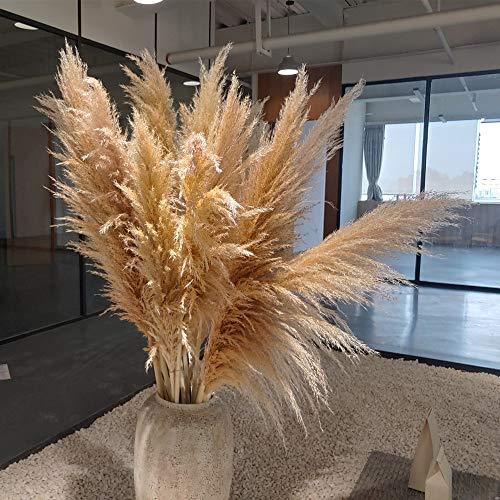 Qianyun Pampasgras im 5er Set XL 120cm natürlich getrocknet und extra flauschig - Plant Wedding Flower Bunch for Home Decorations vom Hochzeitstrend zum Interior-Liebling