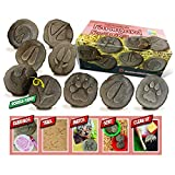 Yellow Door YUS1065 Let's Investigate Farmyard Footprints Stone (Pack of 8)