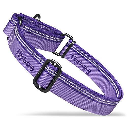 Hyhug Pets - Collare riflettente per cani con tessuto jacquard, in nylon, per cani giganti, medi, piccoli, per passeggiate e allenamenti quotidiani, taglia L, ultra violetta