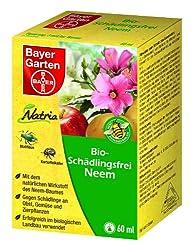 Neem Gegen Blattläuse : neem l gegen blattl use hilft es wirklich meine tipps ~ Watch28wear.com Haus und Dekorationen