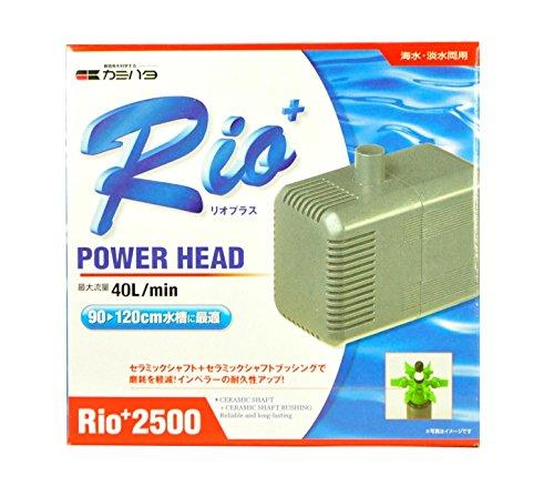 カミハタ Rio+2500 (60Hz)