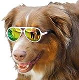 GO10 Dog Aviator Sunglasses