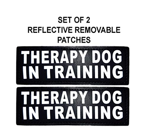 Doggie Stylz Set of 2 Reflective Therapy Dog in Training Patches for Service Dog Harnesses & Vests. (Large 6