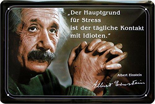Blechschild 20x30 cm Einstein Zitat Der Hauptgrund für Stress ist der tägliche Kontakt mit Idioten