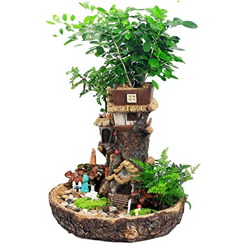 El más nuevo mini macetero de resina para jardín de hadas, innovador macetero de micropaisaje de bricolaje suculento en forma de árbol, macetas decorativas multicapa para decoración del hogar,
