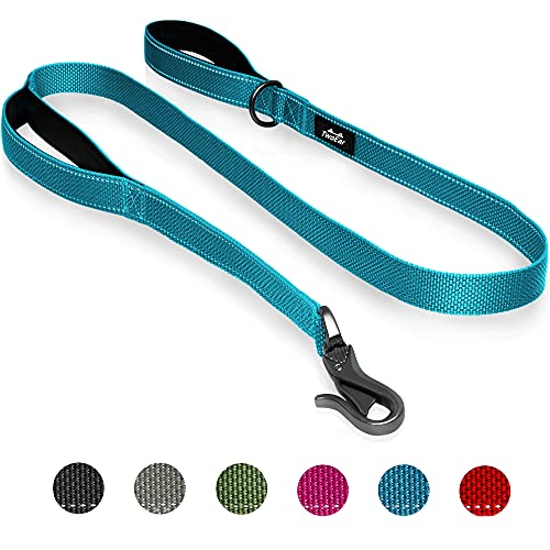 TwoEar 6FT 1IN Strong Blue Dog Leash with 2 Padded Handles, Traffic Handle Extra Control, Comfortable Soft Dual Handle, Auto Lock Hook, Reflective Walking Lead for Small Medium and Large Dogs