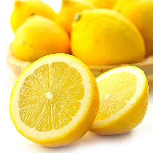 国産 レモン 訳あり お徳用 れもん 5kg