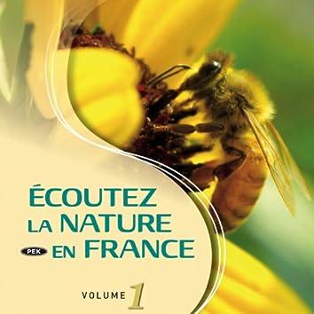 Ecoutez la nature en France, vol. 1 (Nature Immersion)