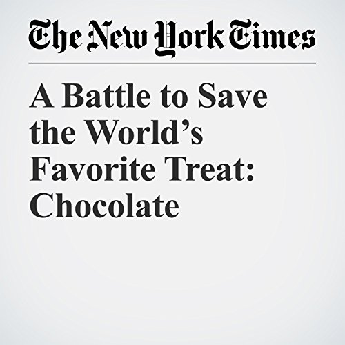 A Battle to Save the World's Favorite Treat: Chocolate copertina