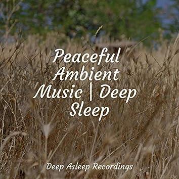 Peaceful Ambient Music   Deep Sleep
