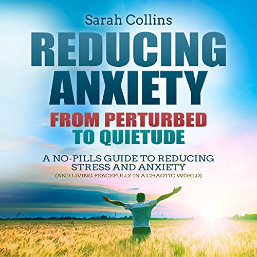 Reducing Anxiety: From Perturbed to Quietude audiobook cover art