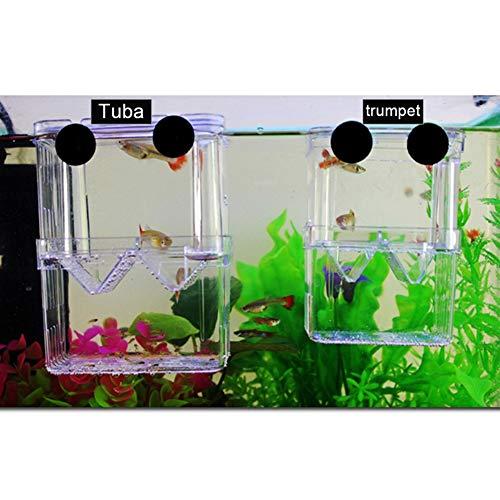 Ammzzoo111 Aquarium Fishes Hatchery Breeding Box, Acrylic Transparent Double Layer Aquarium Fish Breeding Isolation Box Incubator for Small Baby Fishes Shrimp Clownfish S 3.1