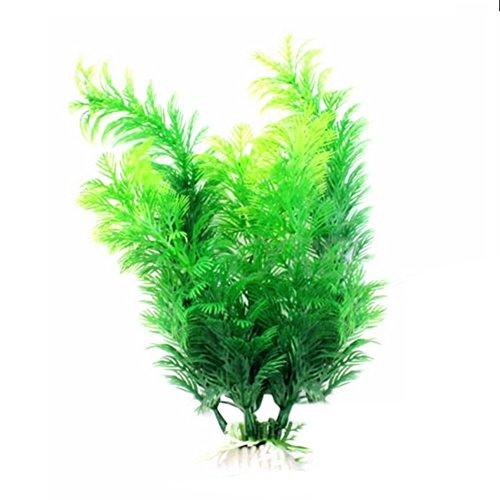 Cratone Planta Artificial de plástico para decoración de Cuna bajo el Agua o pecera de Acuario, 30 cm, Color Verde