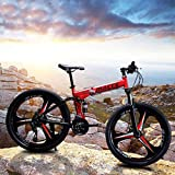2021 New 24 inch Adults Folding Mountain Bike for Men & Women High-Carbon Steel Mountain Bike Outdoor Exercise Road Bikes with 21 Speed Dual Disc Brakes Full Suspension Non-Slip Red (US Stock)
