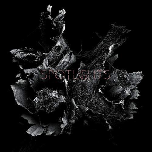 Love & Decay (2lp,Hellviolette) [Vinyl LP]