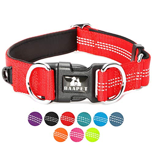 BAAPET Comfortable Dog Collar with Double Security Dual D-Ring and ID Tag Hanger for Small Puppy, Medium and Large Dogs (S - 3/4' x (11'-16'), Red)