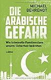 Die arabische Gefahr: Wie kriminelle Familienclans unsere Sicherheit bedrohen - Michael Behrendt