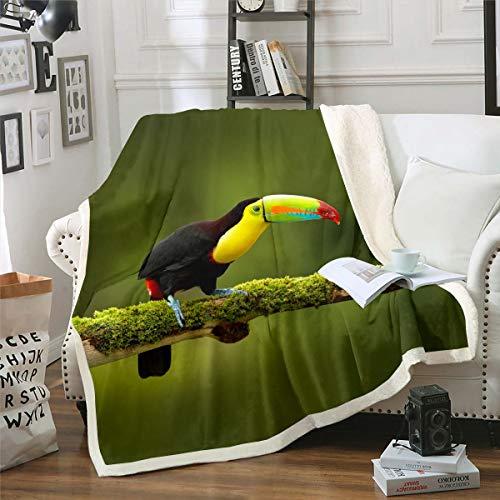 Loussiesd Toucan Manta de forro polar para sofá cama, pájaro, manta decorativa 3D con estampado de animales sherpa, decoración de estilo de vida salvaje, manta difusa para bebé 76 x 100 cm