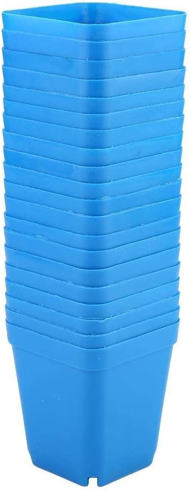 Rockyin 20pcs Mini Moderna Planta suculenta pequeñas macetas de plástico Contenedores, Scrub macetas cuadradas (Azul)