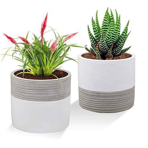 The Next Gardener Brief Succulent Pots, 5 inch Diameter, 2 Pack Modern Cement Cactus Flower Aloe Snake Plant Planter Container with Drainage Hole, White (P013)