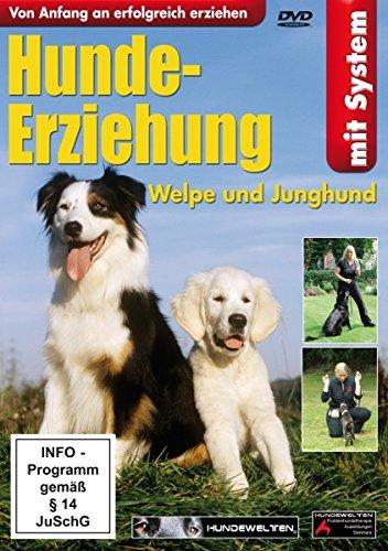 Hunde-Erziehung-Welpe und Junghund - Bekannt aus dem Fernsehen