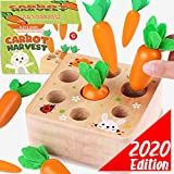 Cheffun Wooden Montessori Toys for Toddlers - 1 Year Old Baby Toy Carrots Harvest Shape and Sizes Sorting Wooden Puzzle Blocks Game Best Educational Toys Games for Kids 1 2 3 4 Year Old Boys and Girls