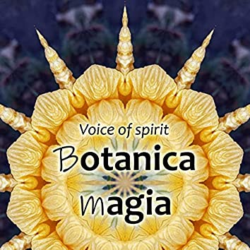 Voice of Spirit
