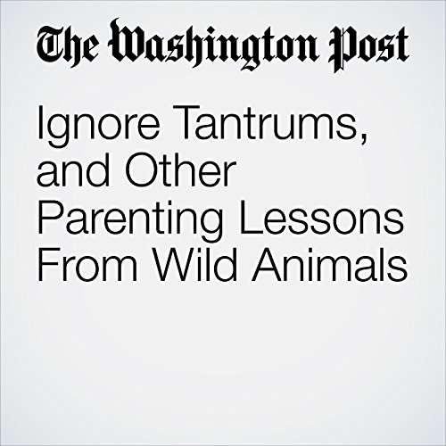Ignore Tantrums, and Other Parenting Lessons From Wild Animals copertina