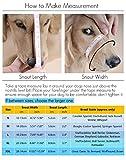 ubest Hund Maulkorb mit Klettverschluss, Gepolstert und Einstellbar Nylon, für meistens Hunde, Größe M, Schwarz - 2