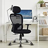 Best Ergonomic Office Chairs - Green Soul ® Crystal High-Back Mesh Office Executive Review