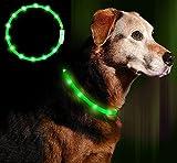 LED Leuchthalsband Hunde Halsband - USB wiederaufladbar - Längenverstellbarer Haustier Sicherheit Kragen für Hunde und Katzen- 4 Modus 12 Lichte(Grün)