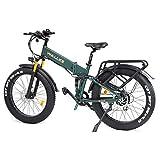 W Wallke X3 Pro Folding Ebike Upgrade Frame Fat Tire Electric Bicycle 48V14AH Battery Adult Auxiliary Electric Bike 750W Snow Mountain Ebike (Green)