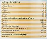 Dehner Best Nature Hundefutter, Adult Lamm und Kartoffeln mit Petersilie, 6 x 800 g (4.8 kg) - 6