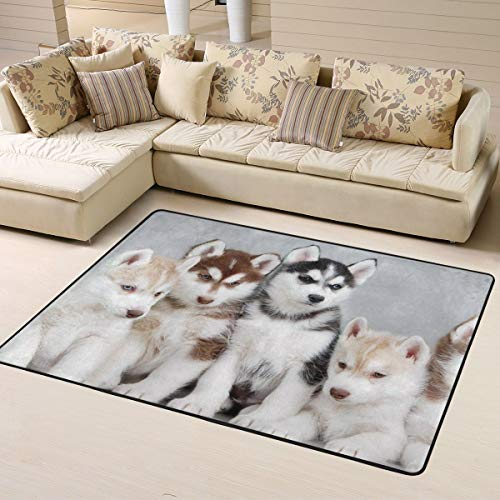 Non Slip Area Rug, Doormat Floor Mat Nursery Rugs, Children Play Rug Carpet Tub Shower Bath Rug, Best of Funny and Cutest Husky Throw Rugs Runner Exercise Mat, Room Bedroom Kitchen Carpet