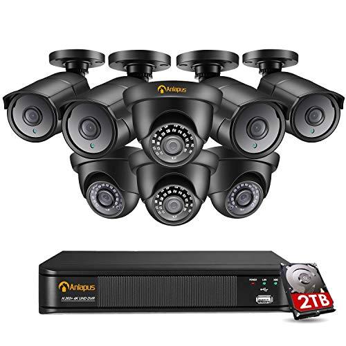 Anlapus Kit de Cámara de Vigilancia 8CH 4K H.265+ Grabador DVR con (8) 8MP Cámara de Seguridad Exterior Domo Bullet, 2TB Disco Duro, Visión Nocturna, Detección de Movimiento, P2P