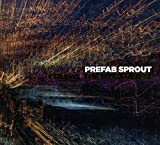 Songtexte von Prefab Sprout - I Trawl the Megahertz