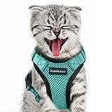 rabbitgoo Cat Harness Escape Proof, Adjustable Small Pets Vest...