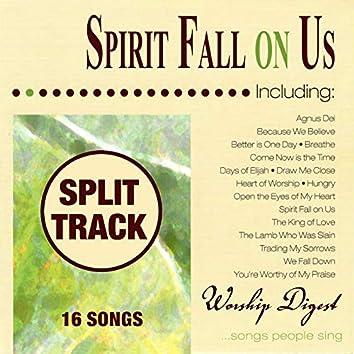 Spirit Fall on Us (Whole Hearted Worship) (Split Tracks)