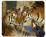 Yanteng Alfombrilla de ratón Tiger Gaming Dibujada a Mano, Alfombrillas de ratón con Bordes...