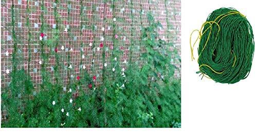 Garden Netting, 1Pcs Garden Climbing Net Plant Trellis, Plant net trellis Green Vegetable Nylon Plant Support & Trellis Netting for Climbing and Vining Plants, Garden Fence (6 x 3 Ft)