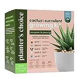Cactus & Succulent Growing Kit w/Moisture Meter - Grow 4 Plants - Complete Kit -...