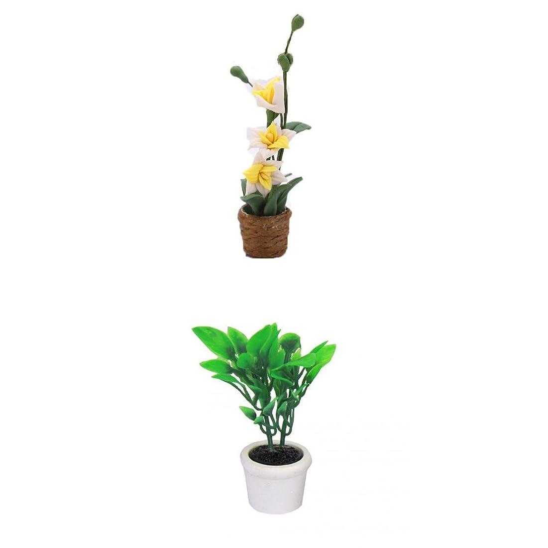 ラップ洗練呼びかける#N/A ドールハウス 植物 白い蘭花 オーキッドフラワー 1/12 手作り アクセサリー+ドールハウス用 白いポット 緑色植物 飾り 1/12 DIY