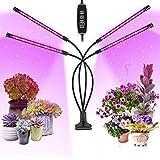 Lámpara de Plantas, luz de cultivo ZAHRVIA para plantas de interior 80 lámparas LED con espectro completo y espectro rojo azul 10 niveles de atenuación y 4 cabezas para plántulas y suculentas