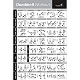 NewMe Fitness Dumbbell Workout Exercise Poster (20x30-inch, Multicolour) gym equipment Oct, 2020